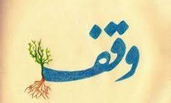 وقف ٩٣٧ متر زمین با نیت تعلیم قرآن در شهر جناح